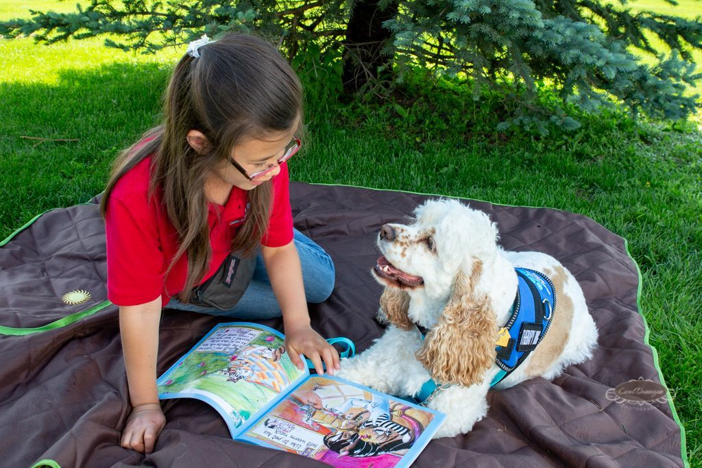 canine community heroes, therapy dogs, commercial photographer, commercial photography, greeley, colorado, commercial