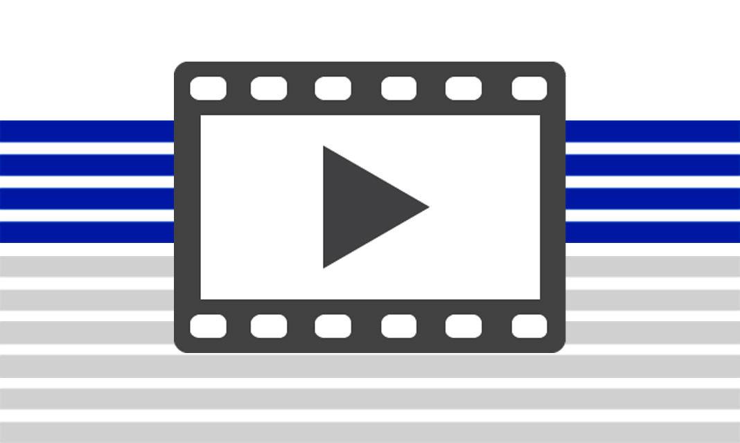 Lions Videos